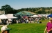 Return Of The Salmon