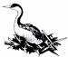 Lake Almanor Grebe Festival