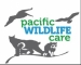 Calling Young Artists: Pacific Wildlife Care's 2017 Youth Art Challenge