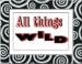 All Things Wild, Call To Artists, Accepting Entries Now