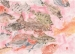 A Life Among Fishes: 50 Years Of Gyotaku