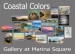 Gallery At Marina Square Presents Coastal Colors A Group Mixed Media Fin